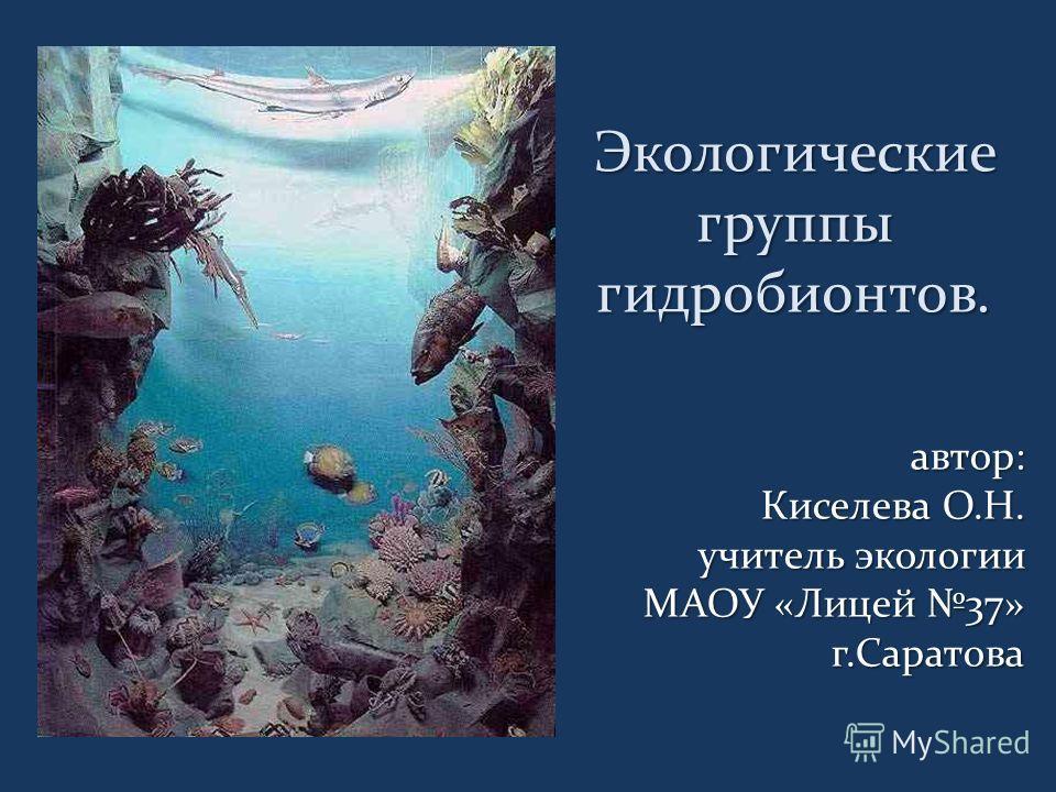 Экологические группы гидробионтов. автор: Киселева О.Н. Киселева О.Н. учитель экологии МАОУ «Лицей 37» г.Саратова