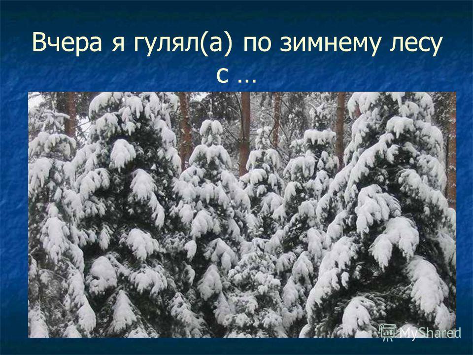 Вчера я гулял(а) по зимнему лесу с …