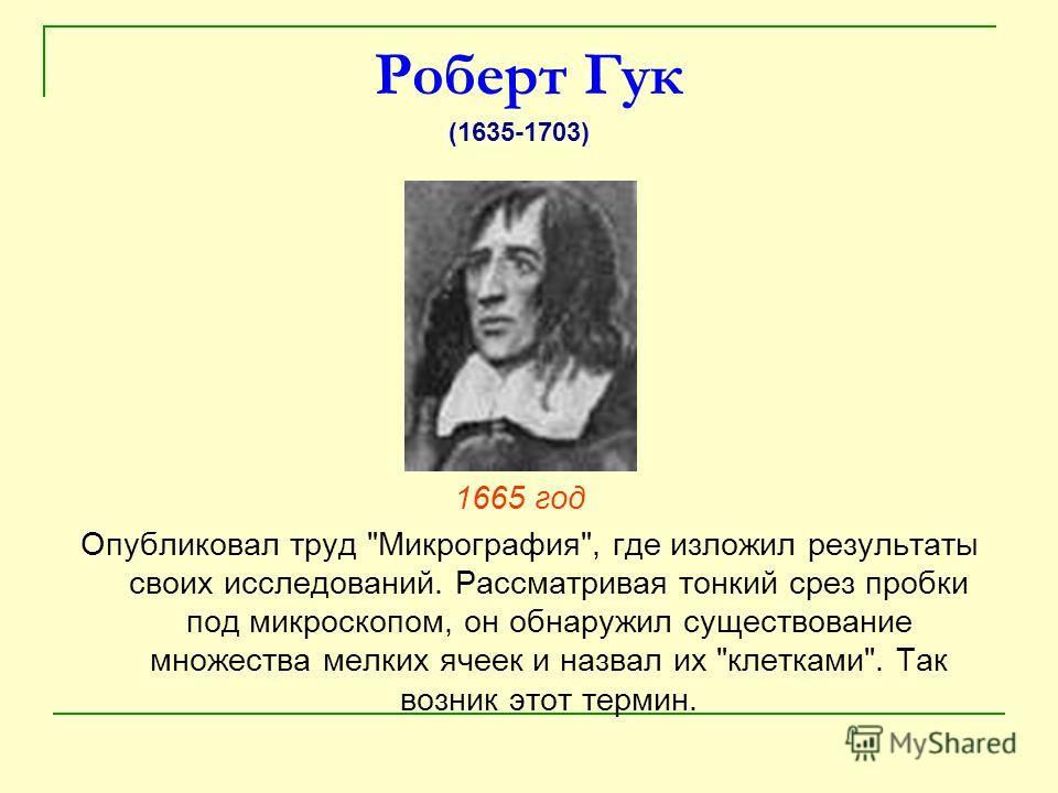 Роберт Гук 1665 год Опубликовал труд