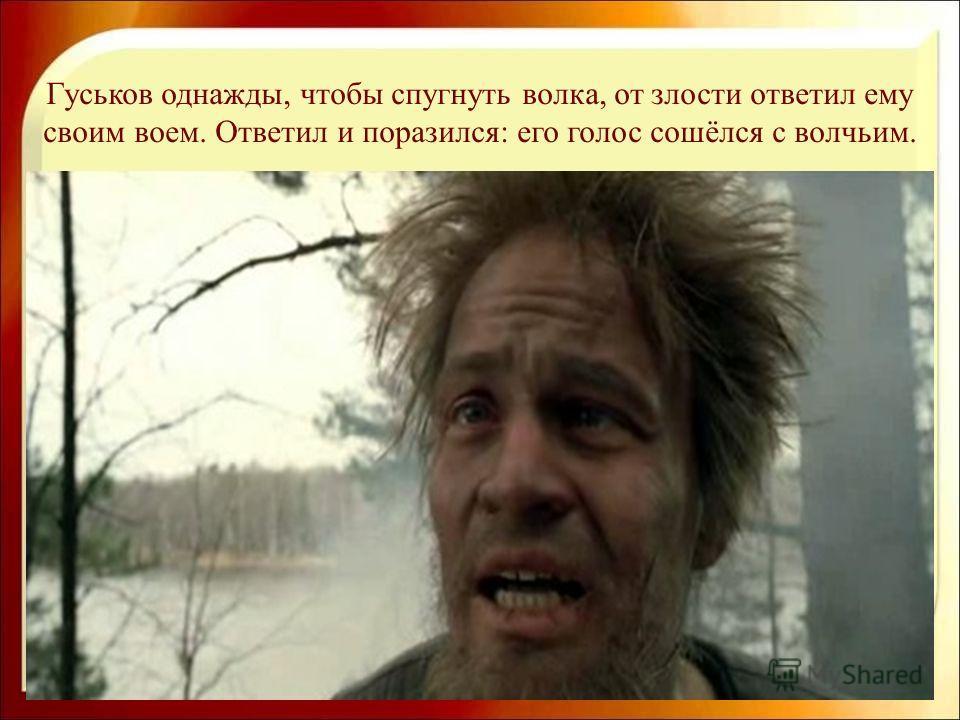 Гуськов однажды, чтобы спугнуть волка, от злости ответил ему своим воем. Ответил и поразился: его голос сошёлся с волчьим.