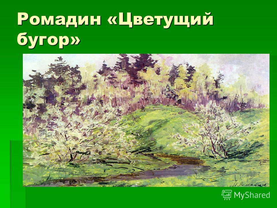 Ромадин «Цветущий бугор»