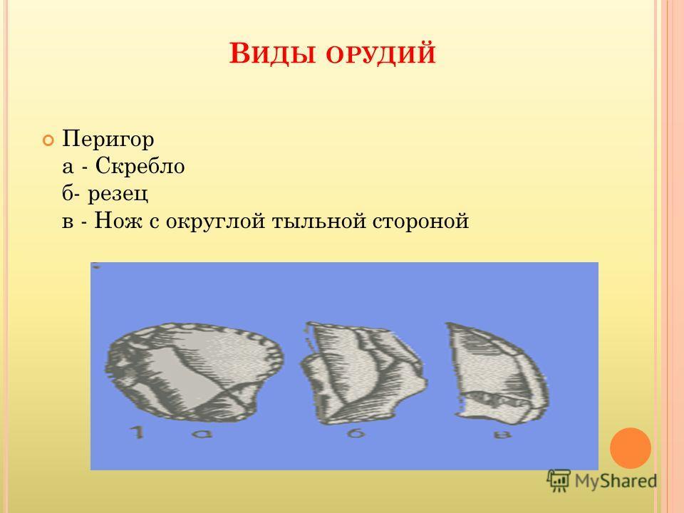 В ИДЫ ОРУДИЙ Перигор а - Скребло б- резец в - Нож с округлой тыльной стороной