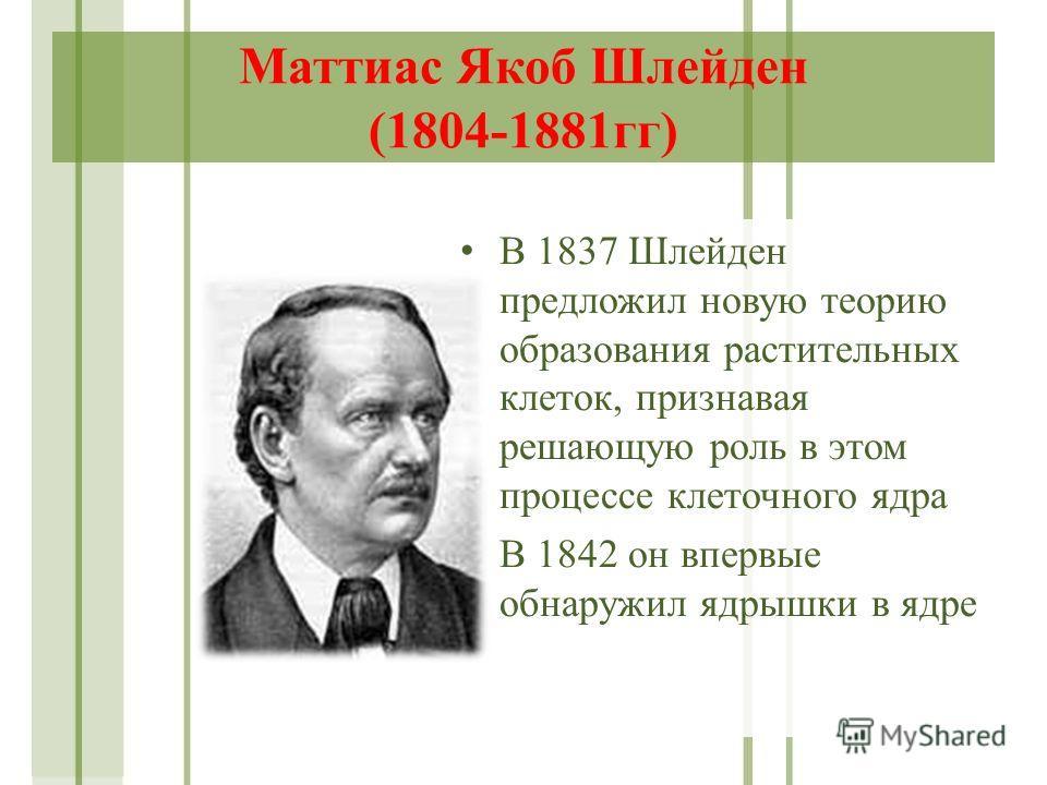 Маттиас Якоб Шлейден (1804-1881гг) В 1837 Шлейден предложил новую теорию образования растительных клеток, признавая решающую роль в этом процессе клеточного ядра В 1842 он впервые обнаружил ядрышки в ядре