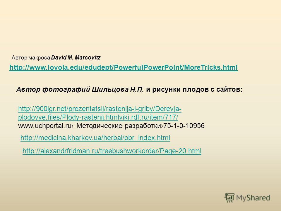 Автор макроса David M. Marcovitz http://www.loyola.edu/edudept/PowerfulPowerPoint/MoreTricks.html Автор фотографий Шильцова Н.П. и рисунки плодов с сайтов: http://900igr.net/prezentatsii/rastenija-i-griby/Derevja- plodovye.files/Plody-rastenij.htmlvi