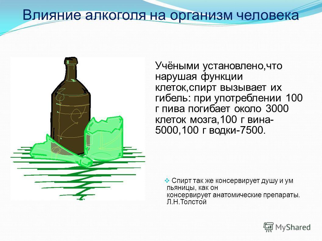 Влияние алкоголя на организм человека Учёными установлено,что нарушая функции клеток,спирт вызывает их гибель: при употреблении 100 г пива погибает около 3000 клеток мозга,100 г вина- 5000,100 г водки-7500. Спирт так же консервирует душу и ум пьяницы