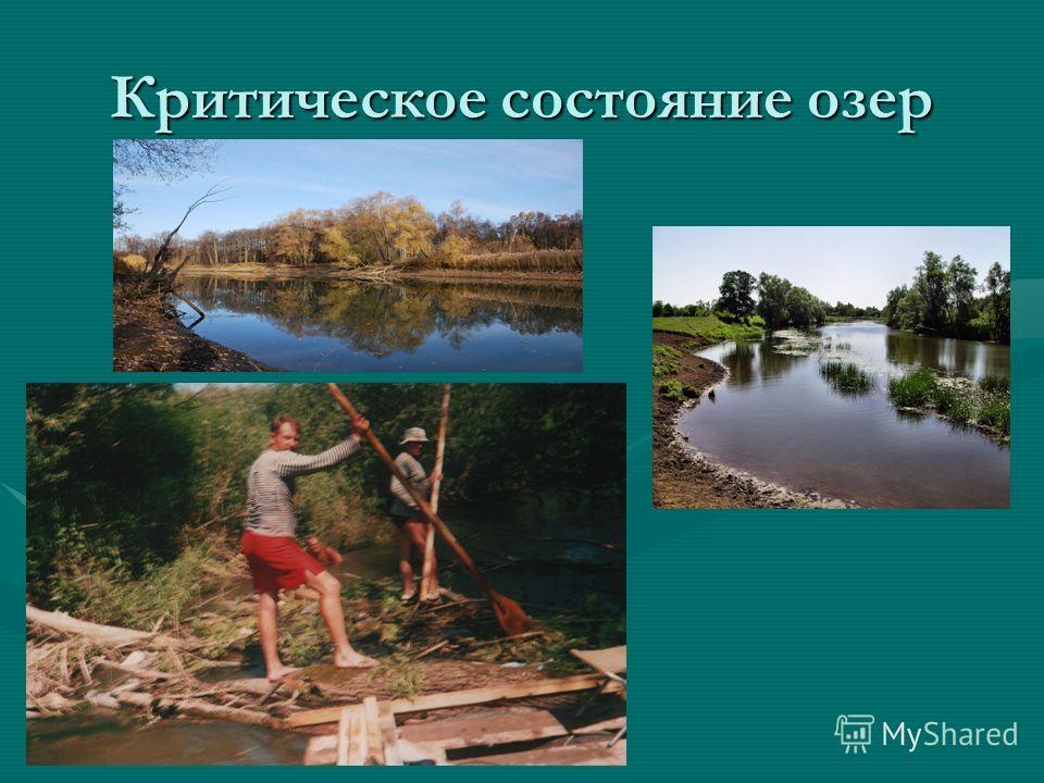 Критическое состояние озер