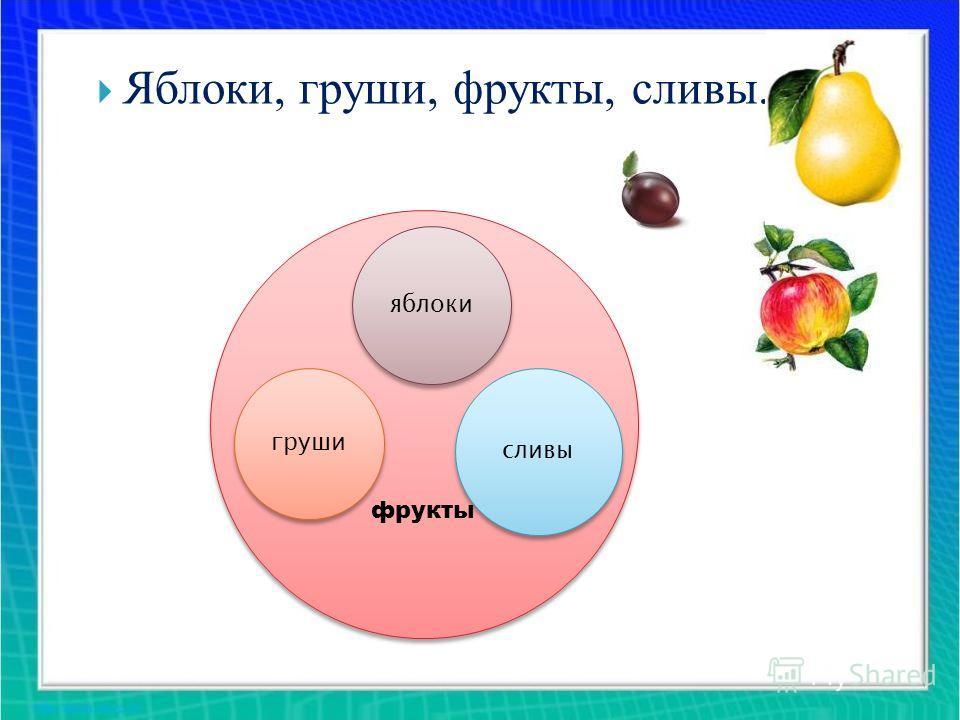 фрукты яблоки груши сливы Яблоки, груши, фрукты, сливы.