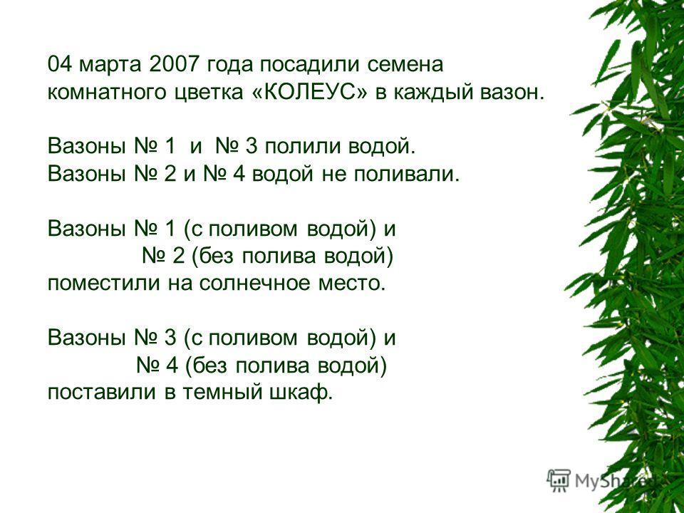 04 марта 2007 года посадили семена комнатного цветка «КОЛЕУС» в каждый вазон. Вазоны 1 и 3 полили водой. Вазоны 2 и 4 водой не поливали. Вазоны 1 (с поливом водой) и 2 (без полива водой) поместили на солнечное место. Вазоны 3 (с поливом водой) и 4 (б