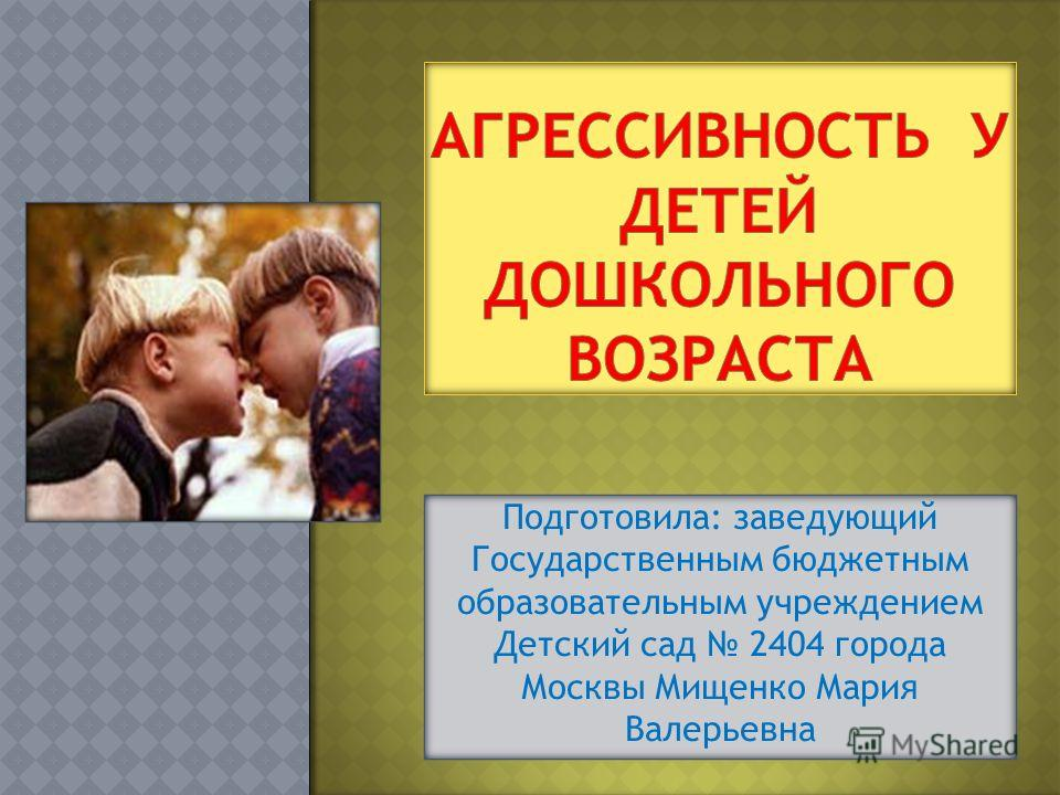 Подготовила: заведующий Государственным бюджетным образовательным учреждением Детский сад 2404 города Москвы Мищенко Мария Валерьевна