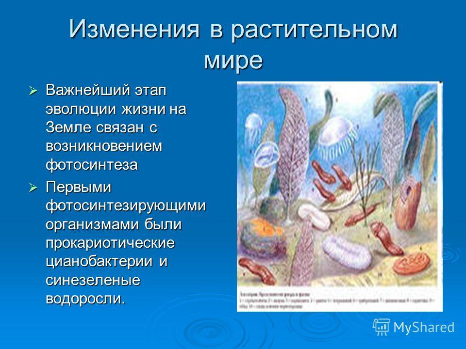 Изменения в растительном мире Важнейший этап эволюции жизни на Земле связан с возникновением фотосинтеза Важнейший этап эволюции жизни на Земле связан с возникновением фотосинтеза Первыми фотосинтезирующими организмами были прокариотические цианобакт