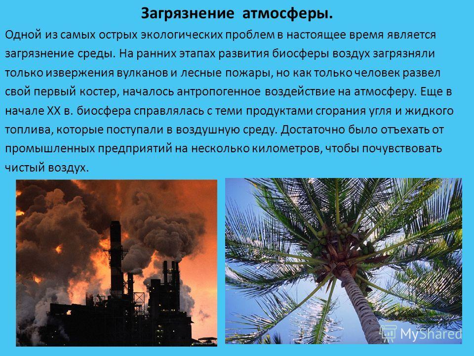 Загрязнение атмосферы. Одной из самых острых экологических проблем в настоящее время является загрязнение среды. На ранних этапах развития биосферы воздух загрязняли только извержения вулканов и лесные пожары, но как только человек развел свой первый