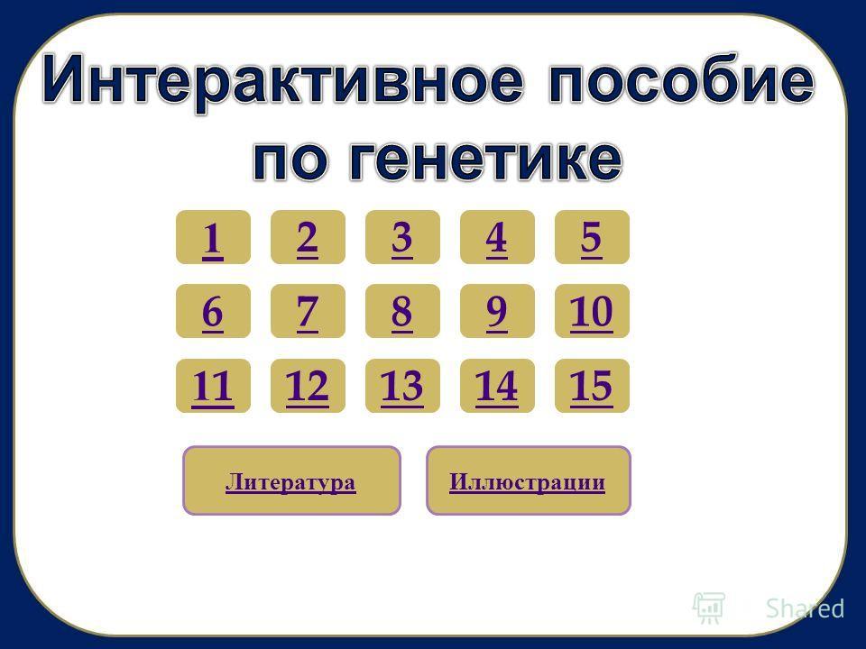 12345 67 1111 89 13 10 121514 ЛитератураИллюстрации