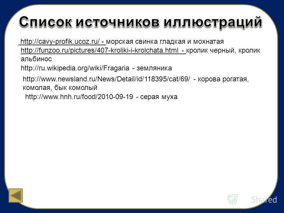http://cavy-profik.ucoz.ru/ - морская свинка гладкая и мохнатая http://funzoo.ru/pictures/407-kroliki-i-krolchata.html - кролик черный, кролик альбинос http://ru.wikipedia.org/wiki/Fragaria - земляника http://www.newsland.ru/News/Detail/id/118395/cat