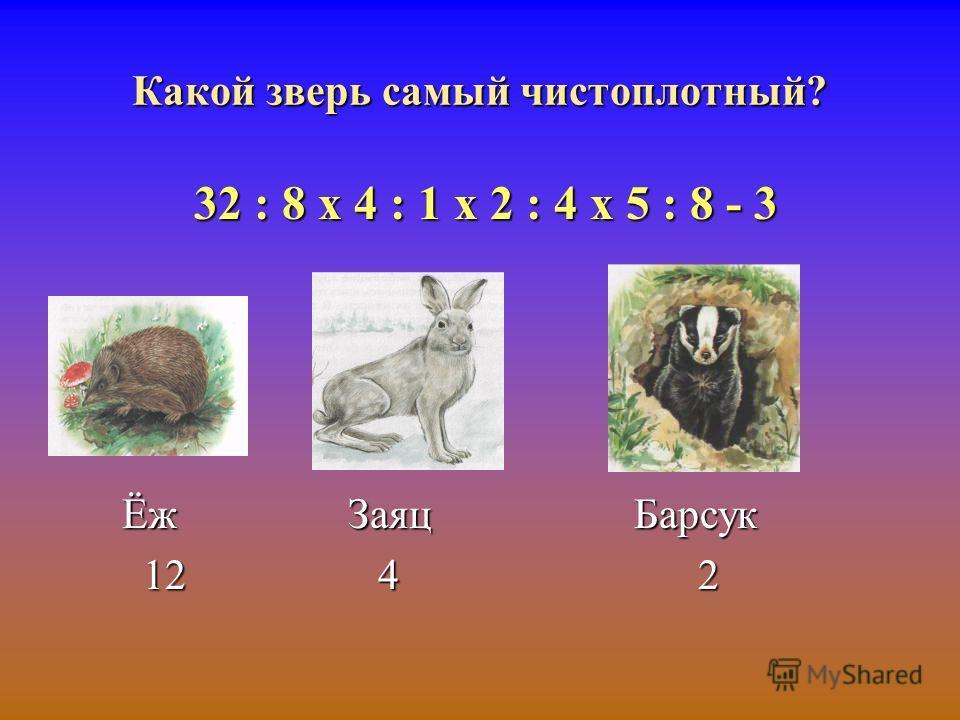 Какой зверь самый чистоплотный? 32 : 8 х 4 : 1 х 2 : 4 х 5 : 8 - 3 Ёж Заяц Барсук 12 4 2