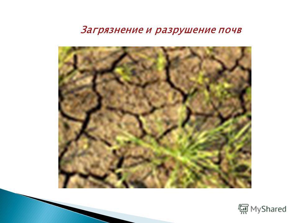 Загрязнение и разрушение почв