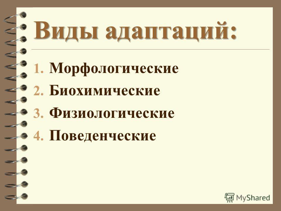 Виды адаптаций: 1. Морфологические 2. Биохимические 3. Физиологические 4. Поведенческие