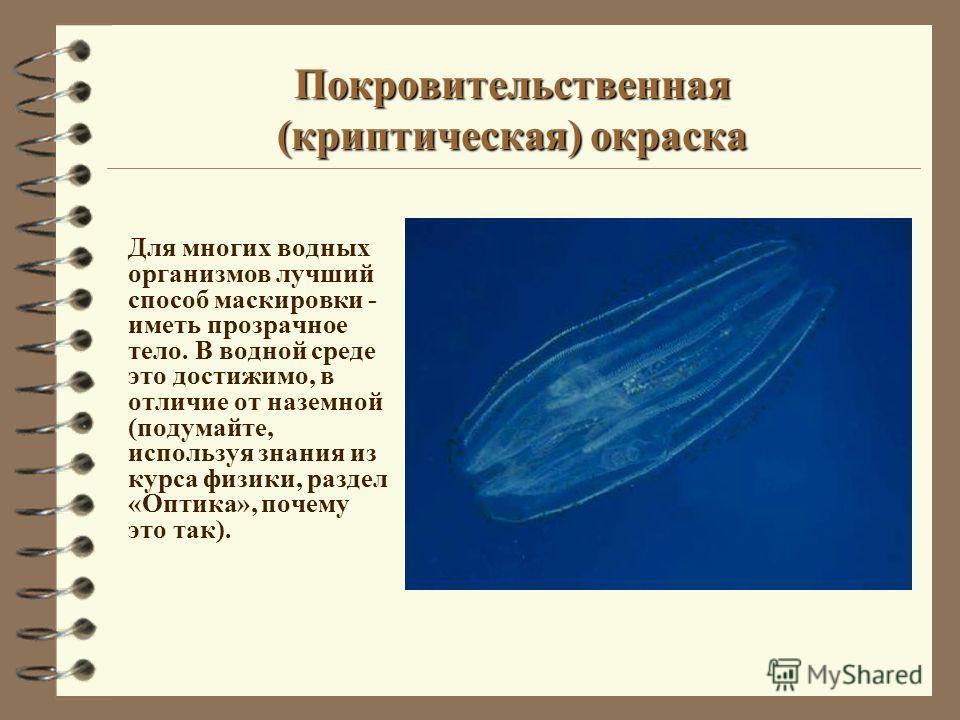 Для многих водных организмов лучший способ маскировки - иметь прозрачное тело. В водной среде это достижимо, в отличие от наземной (подумайте, используя знания из курса физики, раздел «Оптика», почему это так).