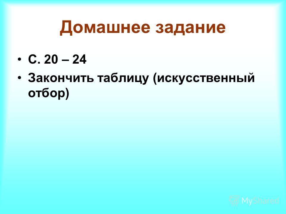 Домашнее задание С. 20 – 24 Закончить таблицу (искусственный отбор)