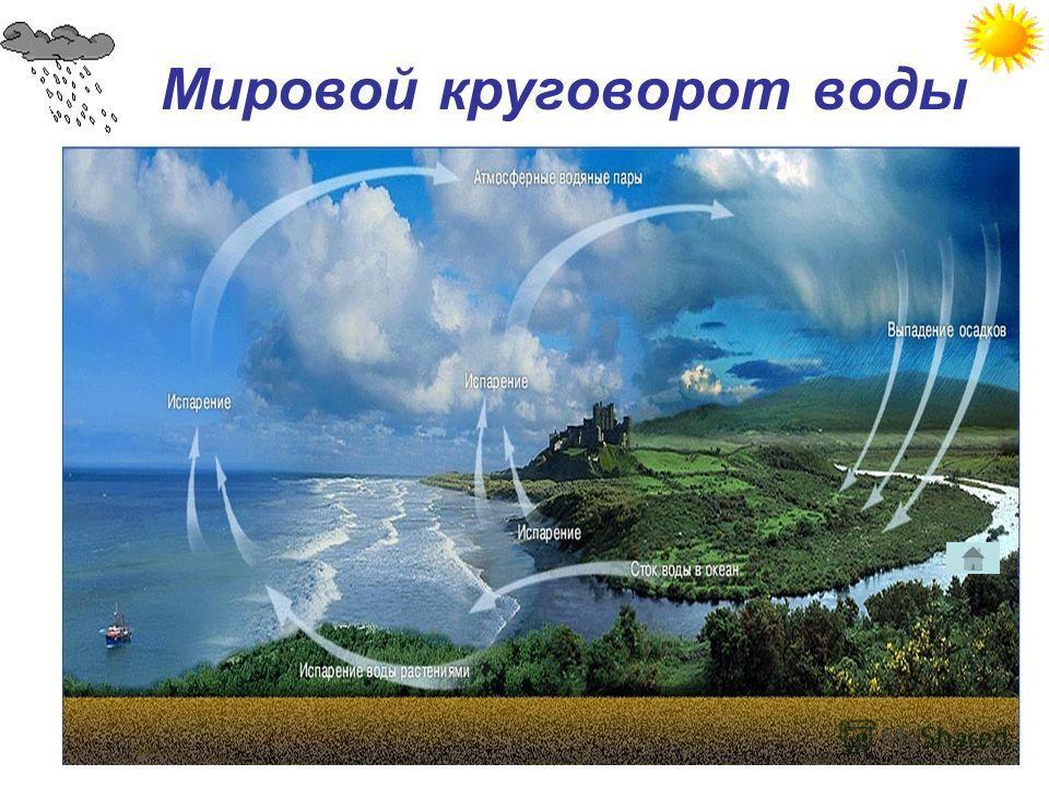 Мировой круговорот воды