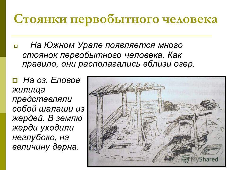 Стоянки первобытного человека На Южном Урале появляется много стоянок первобытного человека. Как правило, они располагались вблизи озер. На оз. Еловое жилища представляли собой шалаши из жердей. В землю жерди уходили неглубоко, на величину дерна.