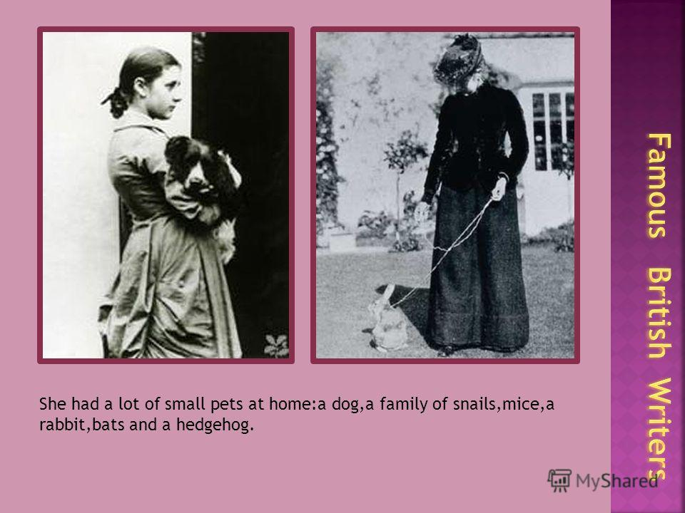 She had a lot of small pets at home:a dog,a family of snails,mice,a rabbit,bats and a hedgehog.