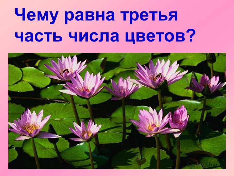 Чему равна третья часть числа цветов?