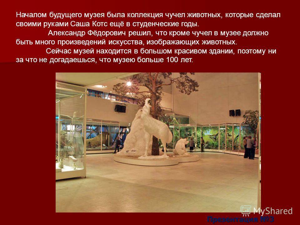 Началом будущего музея была коллекция чучел животных, которые сделал своими руками Саша Котс ещё в студенческие годы. Александр Фёдорович решил, что кроме чучел в музее должно быть много произведений искусства, изображающих животных. Сейчас музей нах