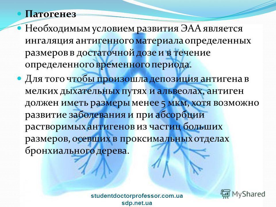 Патогенез Необходимым условием развития ЭАА является ингаляция антигенного материала определенных размеров в достаточной дозе и в течение определенного временного периода. Для того чтобы произошла депозиция антигена в мелких дыхательных путях и альве
