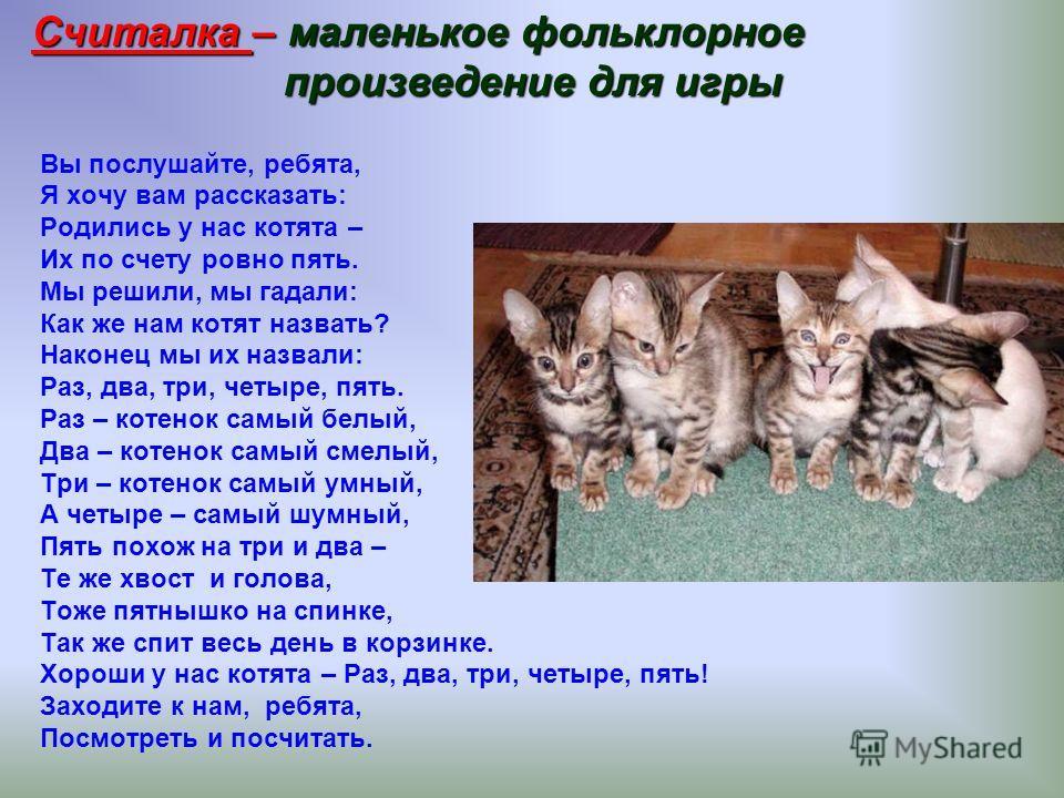 Вы послушайте, ребята, Я хочу вам рассказать: Родились у нас котята – Их по счету ровно пять. Мы решили, мы гадали: Как же нам котят назвать? Наконец мы их назвали: Раз, два, три, четыре, пять. Раз – котенок самый белый, Два – котенок самый смелый, Т
