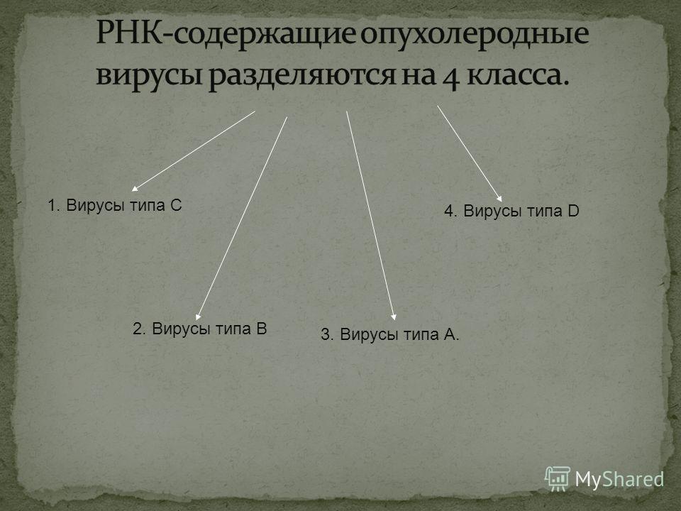 1. Вирусы типа С 2. Вирусы типа В 3. Вирусы типа А. 4. Вирусы типа D