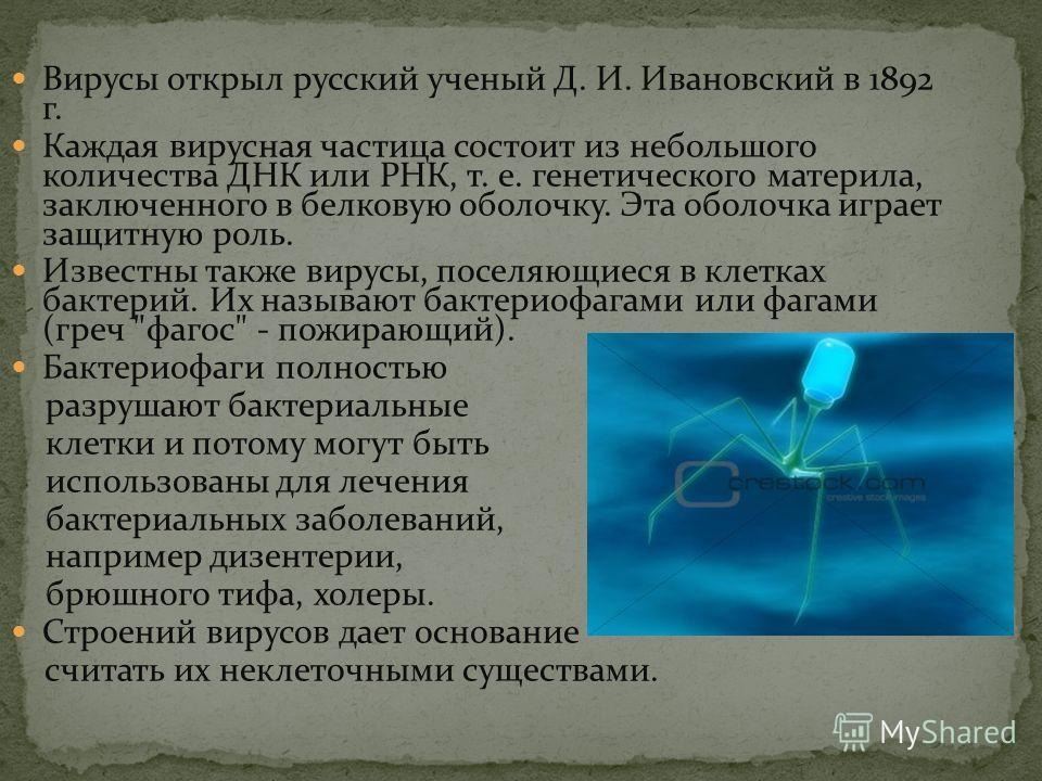 Вирусы открыл русский ученый Д. И. Ивановский в 1892 г. Каждая вирусная частица состоит из небольшого количества ДНК или РНК, т. е. генетического материла, заключенного в белковую оболочку. Эта оболочка играет защитную роль. Известны также вирусы, по