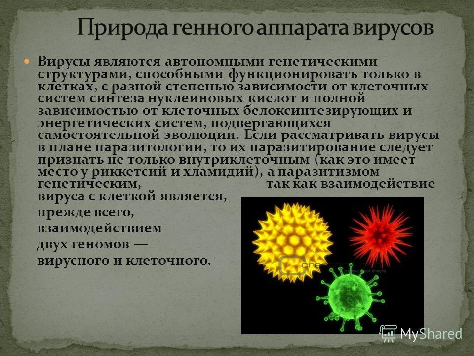 Вирусы являются автономными генетическими структурами, способными функционировать только в клетках, с разной степенью зависимости от клеточных систем синтеза нуклеиновых кислот и полной зависимостью от клеточных белоксинтезирующих и энергетических си