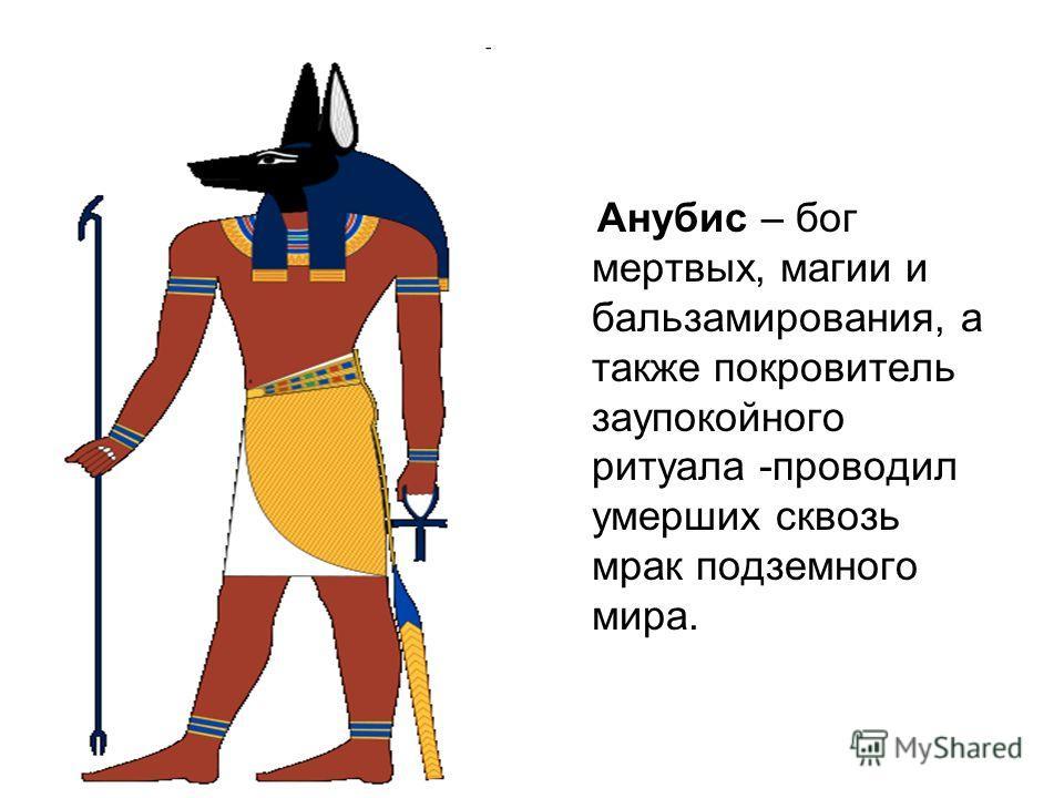 Анубис – бог мертвых, магии и бальзамирования, а также покровитель заупокойного ритуала -проводил умерших сквозь мрак подземного мира.