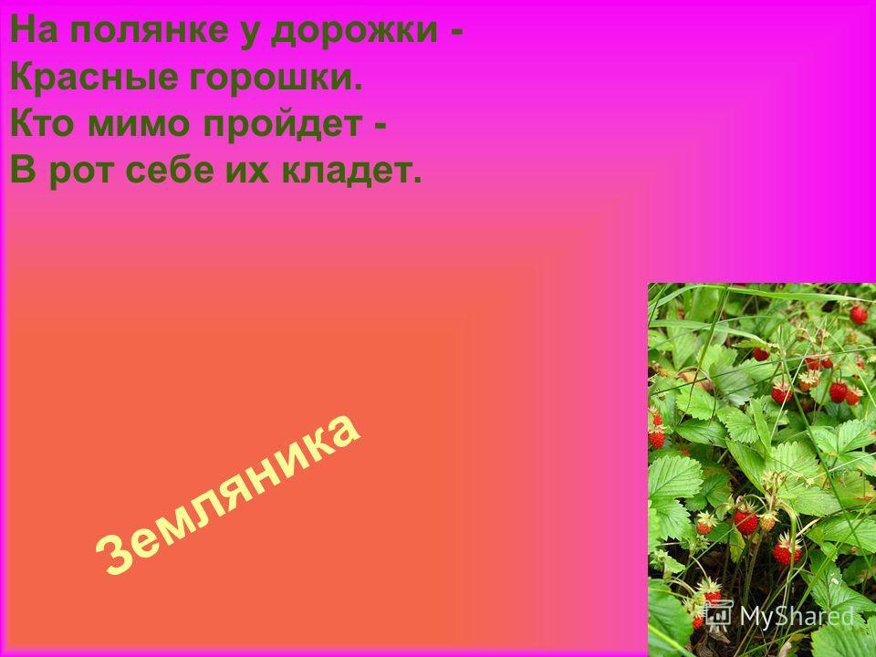 Земляника На полянке у дорожки - Красные горошки. Кто мимо пройдет - В рот себе их кладет.