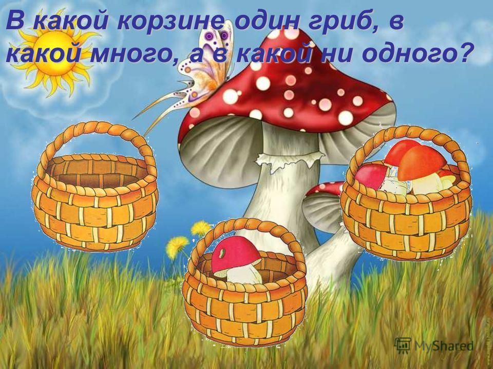 В какой корзине один гриб, в какой много, а в какой ни одного?