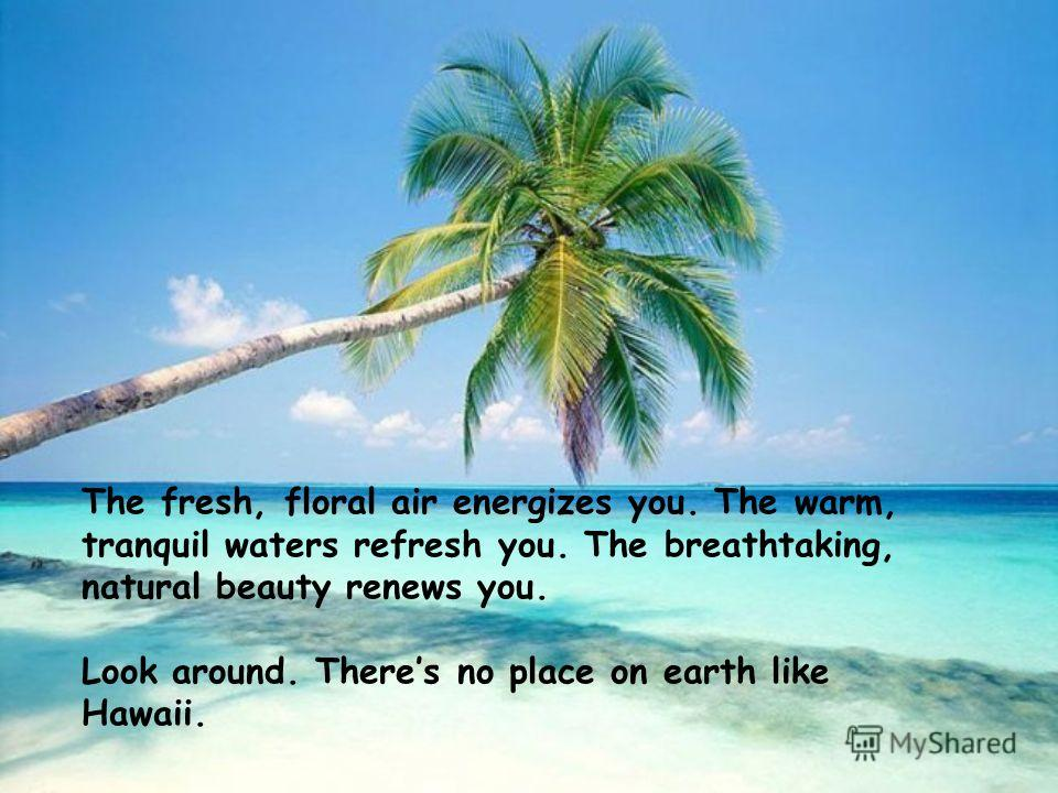 The fresh, floral air energizes you. The warm, tranquil waters refresh you. The breathtaking, natural beauty renews you. Look around. Theres no place on earth like Hawaii.