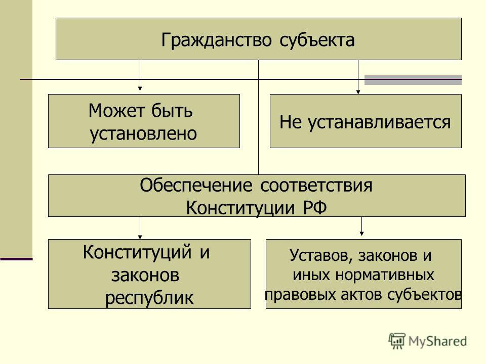 Гражданство субъекта Может быть установлено Не устанавливается Обеспечение соответствия Конституции РФ Конституций и законов республик Уставов, законов и иных нормативных правовых актов субъектов