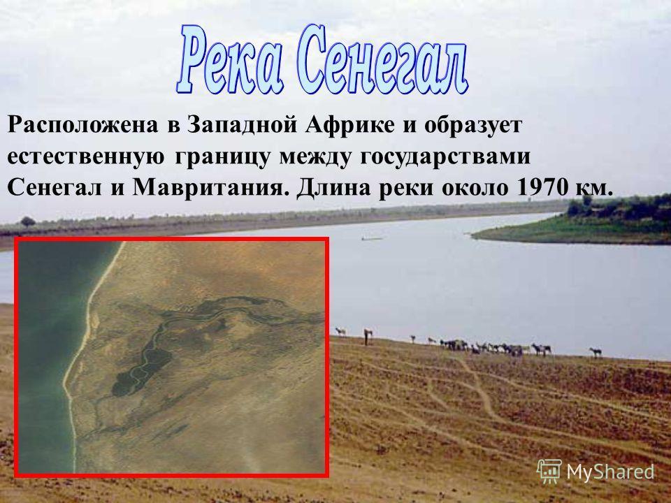 Длина 4160 км, площадь бассейна 2 млн. км², третья в Африке после Нила и Конго. Мост через Нигер Дельта