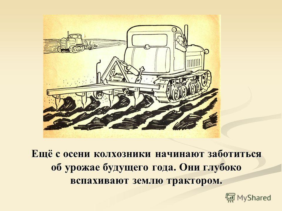 Ещё с осени колхозники начинают заботиться об урожае будущего года. Они глубоко вспахивают землю трактором.