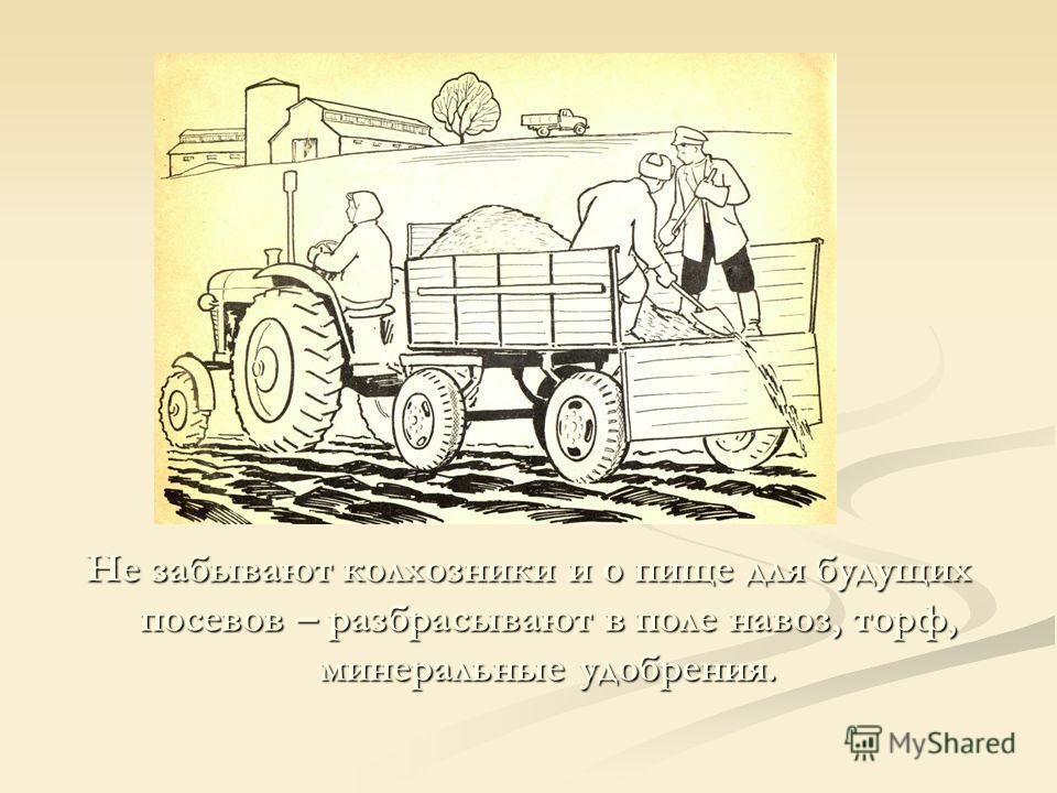 Не забывают колхозники и о пище для будущих посевов – разбрасывают в поле навоз, торф, минеральные удобрения.