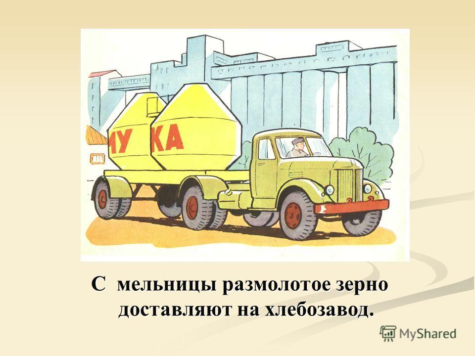 С мельницы размолотое зерно доставляют на хлебозавод.