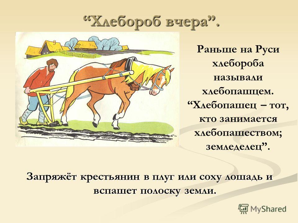 Хлебороб вчера. Хлебороб вчера. Запряжёт крестьянин в плуг или соху лошадь и вспашет полоску земли. Раньше на Руси хлебороба называли хлебопашцем. Хлебопашец – тот, кто занимается хлебопашеством; земледелец.
