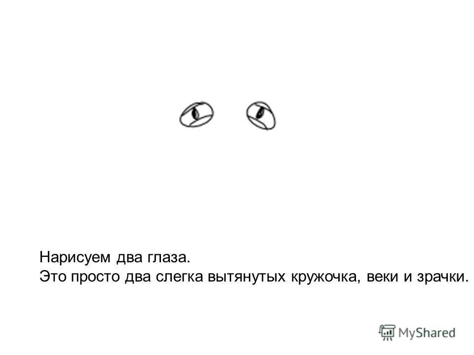 Нарисуем два глаза. Это просто два слегка вытянутых кружочка, веки и зрачки.