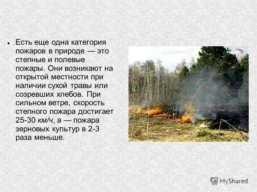 Есть еще одна категория пожаров в природе это степные и полевые пожары. Они возникают на открытой местности при наличии сухой травы или созревших хлебов. При сильном ветре, скорость степного пожара достигает 25-30 км/ч, а пожара зерновых культур в 2-