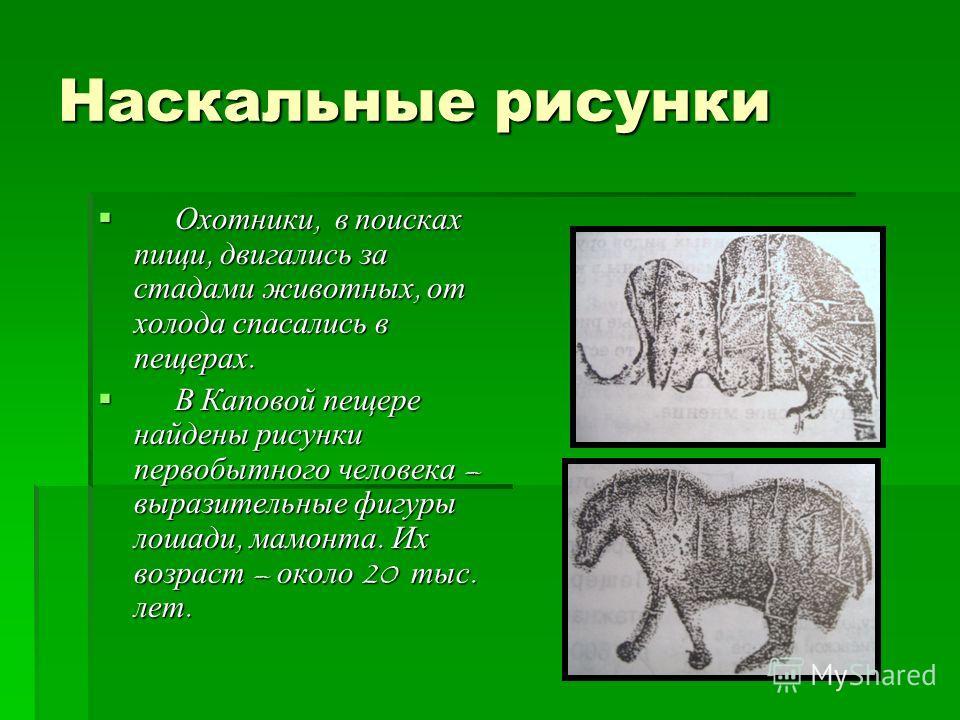 Наскальные рисунки Охотники, в поисках пищи, двигались за стадами животных, от холода спасались в пещерах. Охотники, в поисках пищи, двигались за стадами животных, от холода спасались в пещерах. В Каповой пещере найдены рисунки первобытного человека