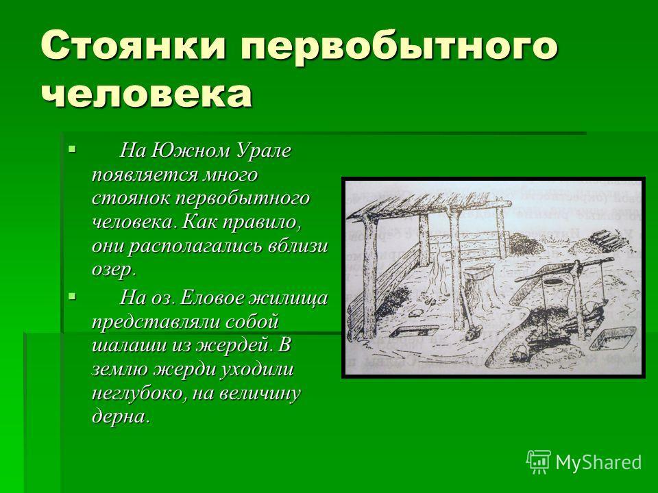 Стоянки первобытного человека На Южном Урале появляется много стоянок первобытного человека. Как правило, они располагались вблизи озер. На Южном Урале появляется много стоянок первобытного человека. Как правило, они располагались вблизи озер. На оз.
