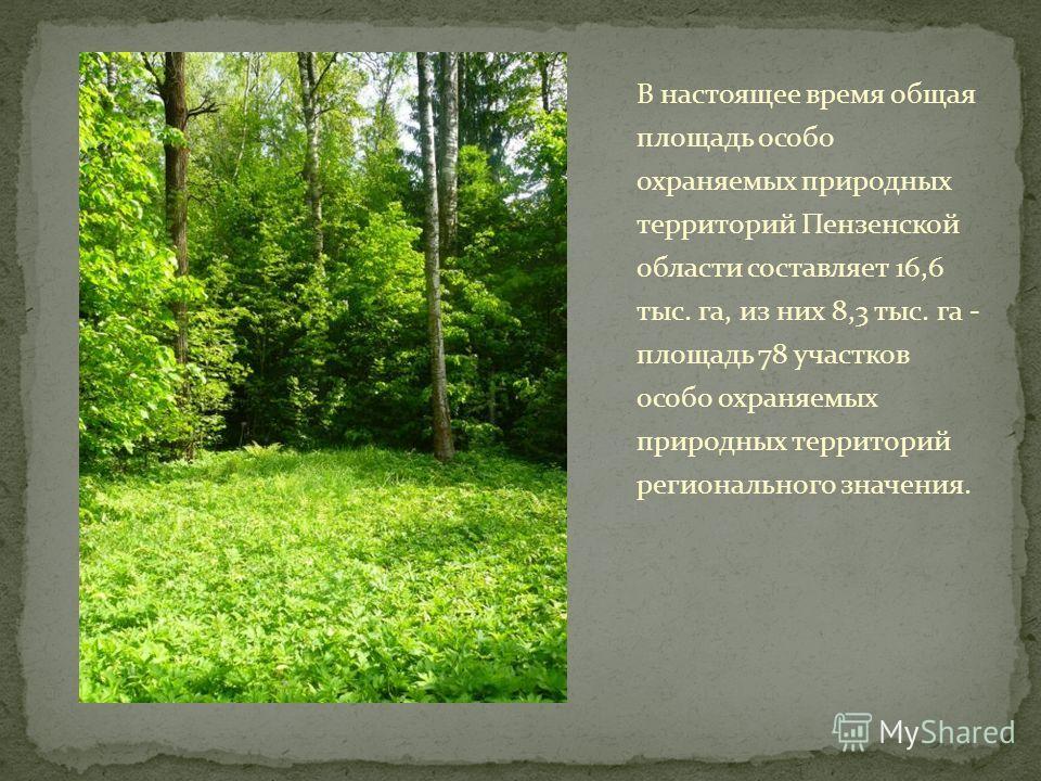 В настоящее время общая площадь особо охраняемых природных территорий Пензенской области составляет 16,6 тыс. га, из них 8,3 тыс. га - площадь 78 участков особо охраняемых природных территорий регионального значения.
