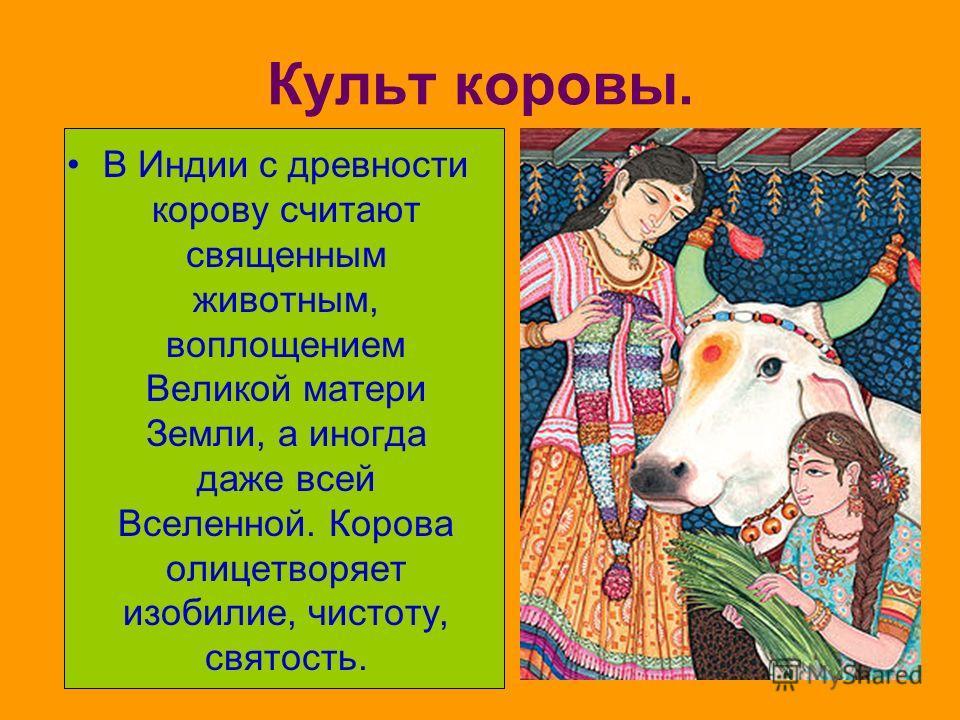 Культ коровы. В Индии с древности корову считают священным животным, воплощением Великой матери Земли, а иногда даже всей Вселенной. Корова олицетворяет изобилие, чистоту, святость.
