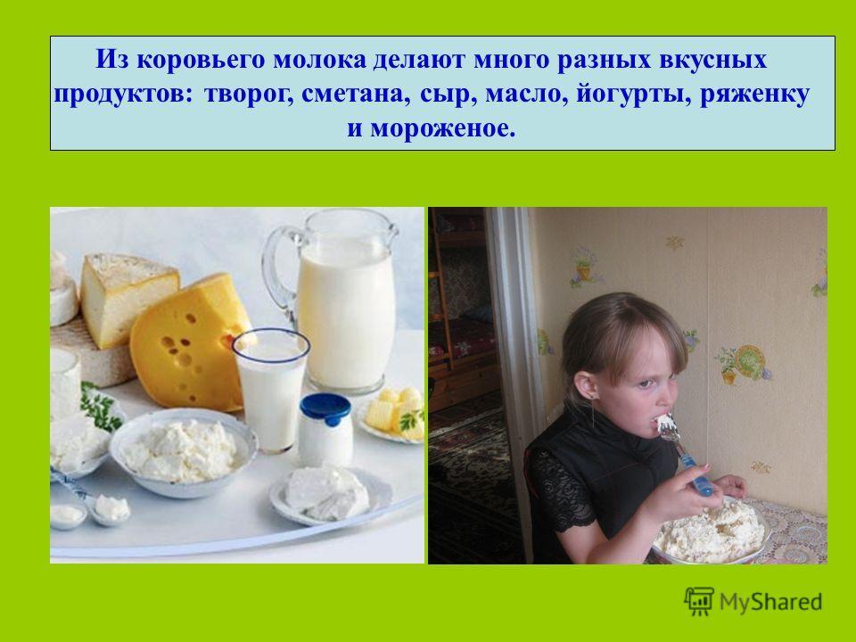 Из коровьего молока делают много разных вкусных продуктов: творог, сметана, сыр, масло, йогурты, ряженку и мороженое.