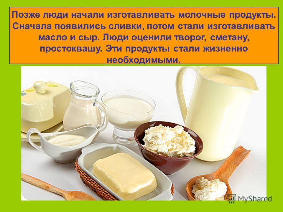 Позже люди начали изготавливать молочные продукты. Сначала появились сливки, потом стали изготавливать масло и сыр. Люди оценили творог, сметану, простоквашу. Эти продукты стали жизненно необходимыми.